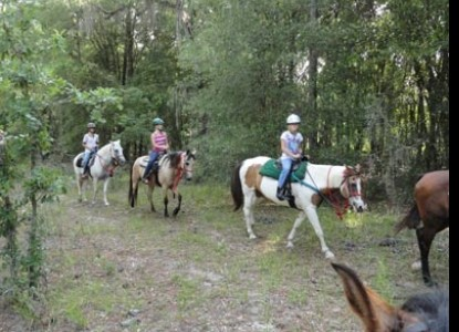 Group Ride - Cypress House Bed & Breakfast Ranch - Bushnell, Florida