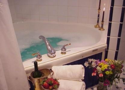 Mont Rest- on the Mississippi, bathtub