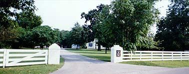 Cinnamon Ridge Bed & Breakfast driveway
