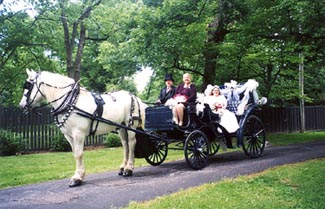 Pinecrest Cottage & Gardens - Carriage Ride