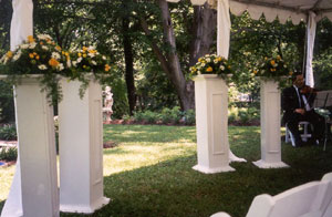 Weddings at Pinecrest Cottage & Gardens