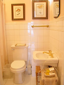 1871 House (New York City Accommodations in the style of a B&b)-Bath
