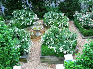 English Boxwood & Rose Garden