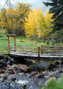 Four Mile Creek Bed & Breakfast Bridge Over Creek