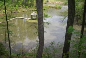 Pilot Knob Inn Lake view through the woods