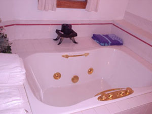 Pilot Knob Inn Whirlpool for two with jets