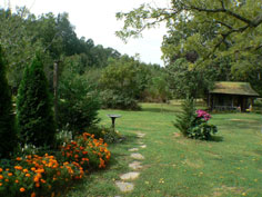 Garden