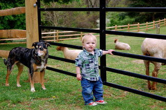 Sweetwater Farm-Kid Friendly