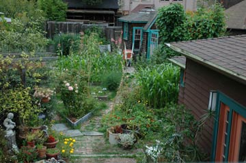 A Bed & Breakfast on Fairmount The Riotous Backyard