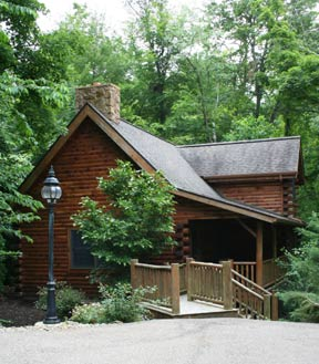 Donna's Premier Lodging-Cedar Log Cabins