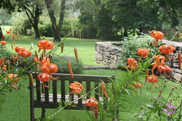 Summer at Merrell Inn