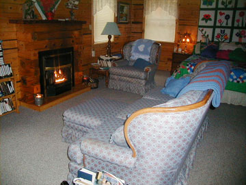 Aunt Jan's Cozy Cabin Bed & Breakfast fireplace