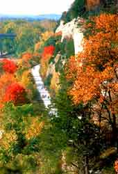 Loganberry Inn Katie Trail