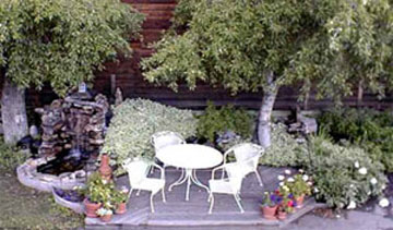 Frisco Lodge-Award Winning Gardens