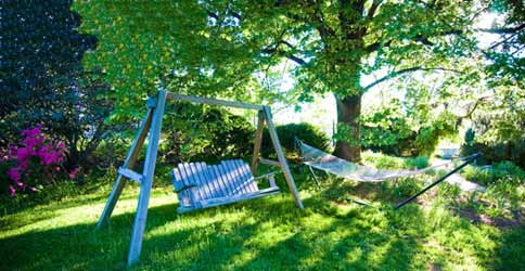 Briar Patch Bed and Breakfast swing