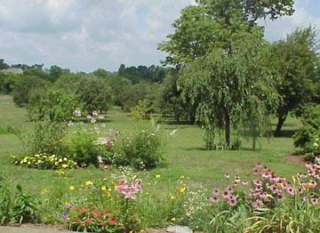Sycamore Knoll B&B Orchard