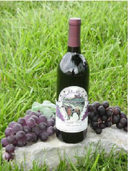 Springhill Winery and Plantation B&B Wine