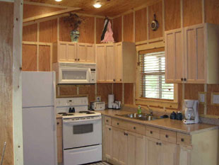 The Katy Cabin-kitchen