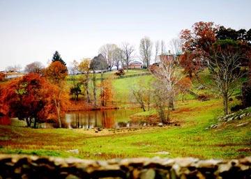 Marriott Ranch & Inn at Fairfield Farm, field