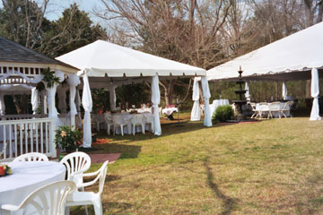 Reception under Tent