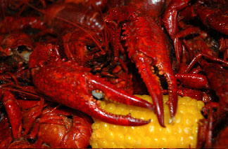 Smell the wonderful aroma of a Crawfish Boil