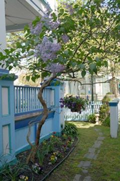 The Harrison Inn, front yard