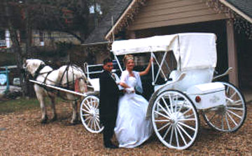 Angel Wings Carriage