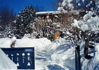 Magical Winters at Homeplace Bed & Breakfast