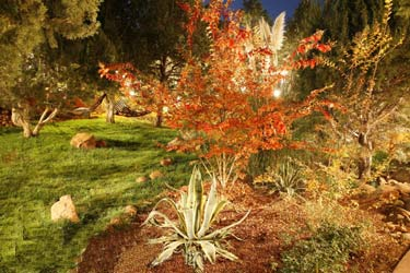 A Sunset Chateau B&B, Beautifully Landscaped Gardens