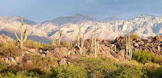 The Inns at El Rancho Merlita Beautiful Surroundings