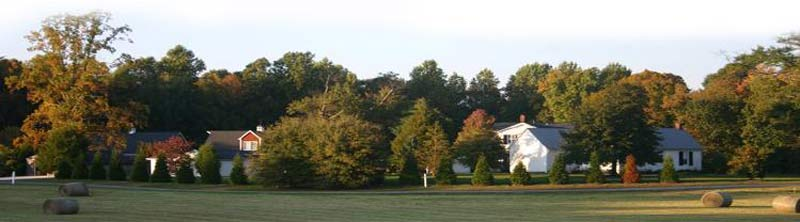 Stevenson Ridge - Spotsylvania, Virginia