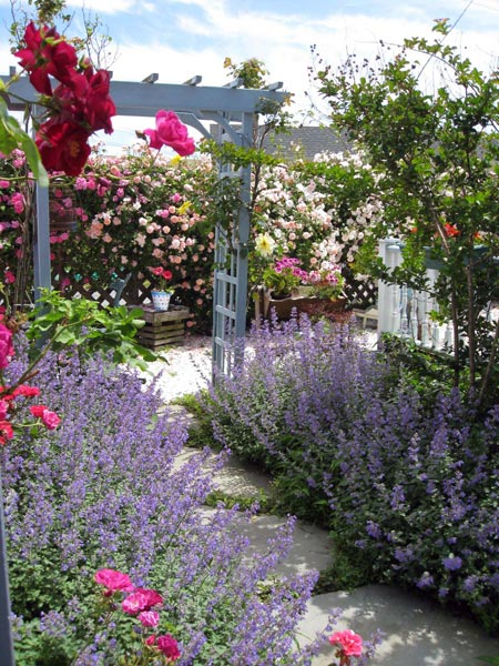 Miss Molly's Inn-Enjoy Beautiful Garden