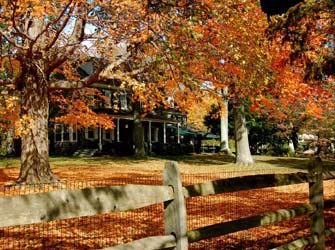 Sweetwater Farm-Fall