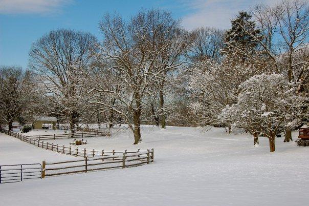 Sweetwater Farm- Snow