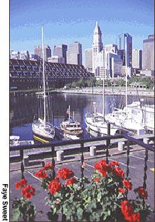 Boston Harbor - Faye Sweet