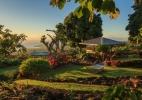 holualoa-gardens-11-x3.jpg
