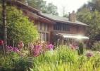 instagram-inn-on-mill-creek-july-phlox.jpg
