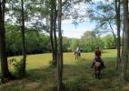 aa-pasture-ride-horiz.jpg