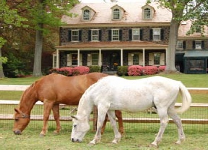 Historic 50 acre estate and vineyard in the Brandywine Valley with 9 distinct guest rooms and 5 pet/child friendly cottages.