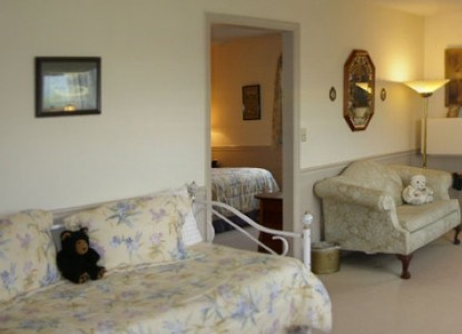 Blue Mountain Mist Country Inn and Cottages Leconte Suite