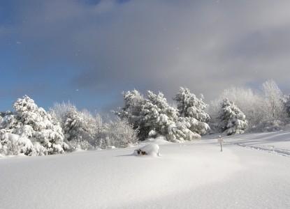 Brookside Manor Bed & Breakfast Snow