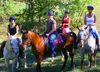 First Farm Inn ,Horses by the Pond