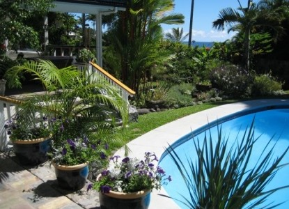 Orchid Tree Bed & Breakfast, swimming pool