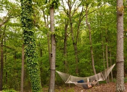 The Iris Inn hammock