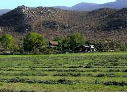 Deer Run Ranch Bed & Breakfast, pasture