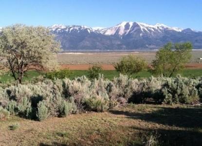 Deer Run Ranch Bed & Breakfast, scenery