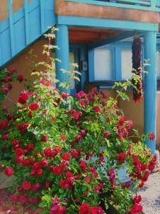 Pueblo Bonito Bed & Breakfast flowers