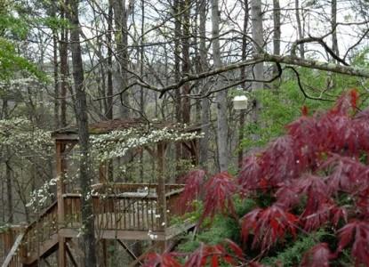 Lily Creek Lodge Bed & Breakfast-Trees