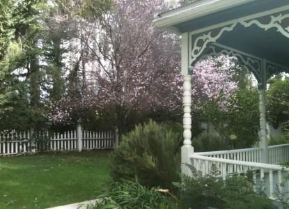 Kaleidoscope Inn and Gardens-Side view