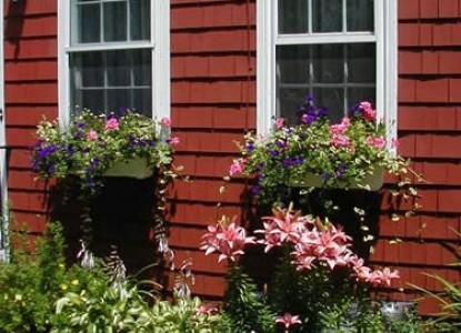 Woods Hole Passage Bed & Breakfast Inn-Flowers